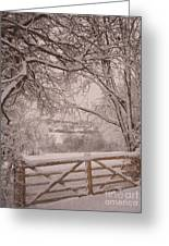 First Fall Of Snow Greeting Card