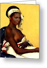 First Lady Greeting Card by Karine Percheron-Daniels