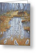 First Light Spring Cattails Greeting Card