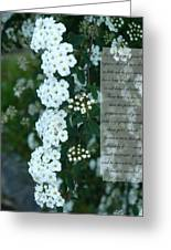 First Peter One Six To Seven White Floral  Greeting Card