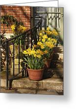 First Signs Of Spring Greeting Card