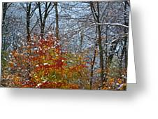 First Snow 2 Greeting Card