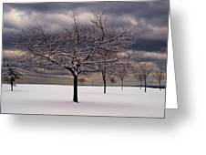 First Snow 2010 Greeting Card