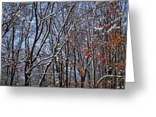 First Snow 4 Greeting Card