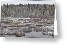 First Snow-algonquin Provincial Park Greeting Card