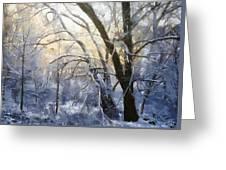 First Snow Greeting Card by Gun Legler