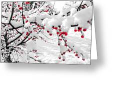 First Snow Greeting Card by Michelle and John Ressler