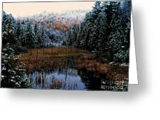 First Snow Greeting Card by Steven Valkenberg