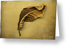 First To Fall Greeting Card