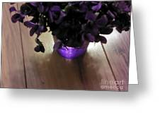 First Violets Greeting Card