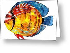 Fish 502-11-13 Marucii Greeting Card