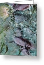 Fish Abstract Greeting Card
