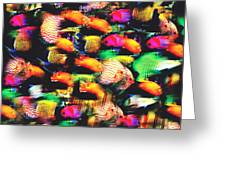 Fish And Fishes Greeting Card