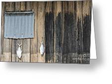 Fish Drying Outside Rustic Fisherman House Greeting Card
