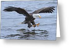 Fish Grab Greeting Card