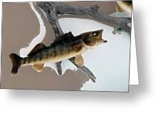 Fish Mount Set 02 C Greeting Card