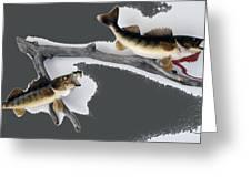 Fish Mount Set 06 B Greeting Card