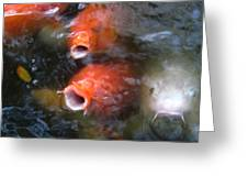 Fish Mouths 2 Greeting Card