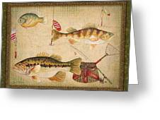 Fish Trio-a-greenborder Greeting Card