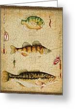 Fish Trio-c-basket Weave Greeting Card