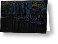 Fisheating Creek 28 Greeting Card by Carol Kay