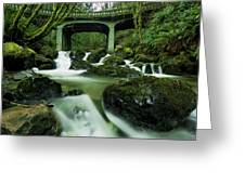 Fisherman's Creek Greeting Card