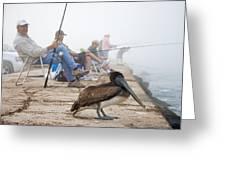 Port Aransas Texas Greeting Card