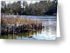 Fishing At Weeks Bay Greeting Card