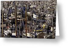Fishing Boats At Fishermens Terminal Greeting Card