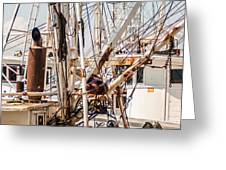 Fishing Boats Equipment Chaos Greeting Card