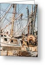 Fishing Boats In Harbour Greeting Card