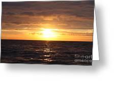 Fishing Into The Sunrise Greeting Card by John Telfer