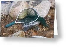 Fishing Net Greeting Card