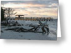 Fishing Pier And Driftwood Greeting Card