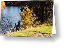 Fishing Spot Greeting Card