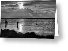 Fishing With Dad - Black And White - Merritt Island Greeting Card