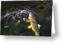 Fishy Kisses Greeting Card