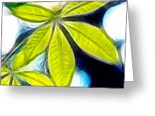 Five Leaves. Greeting Card