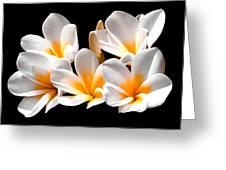 Five Star Greeting Card