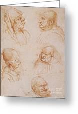 Five Studies Of Grotesque Faces Greeting Card by Leonardo da Vinci