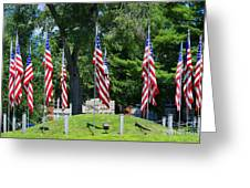 Flag - Illinois Veterans Home - Luther Fine Art Greeting Card