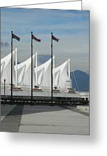 Flags At The Sails  Greeting Card