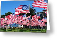 Flags Of Glory Greeting Card