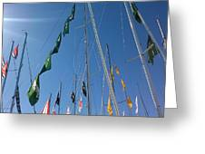 Flags Greeting Card