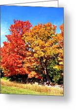 Flamboyant Autumn Greeting Card