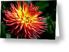 Flame Tips Greeting Card