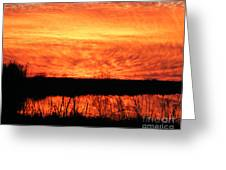 Flamed Sunset Greeting Card