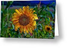 Flaming Sun Greeting Card