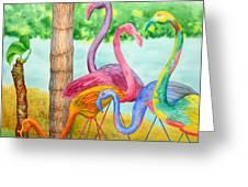 Flamingo Dingos Greeting Card