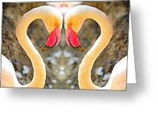 Flamingo Double Vision #1 Greeting Card